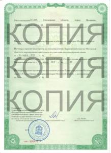 лицензия наша 001