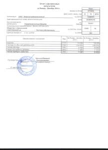 Отчет о прибыли 2014 эссж
