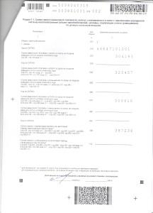 налогововая декларация15